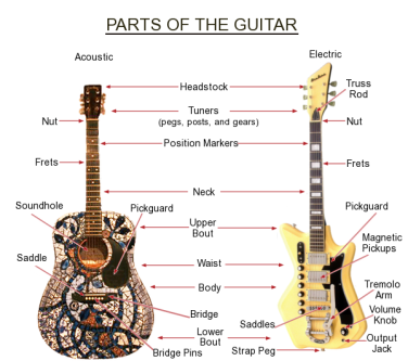 Parts Of The Guitar Tim Lyles