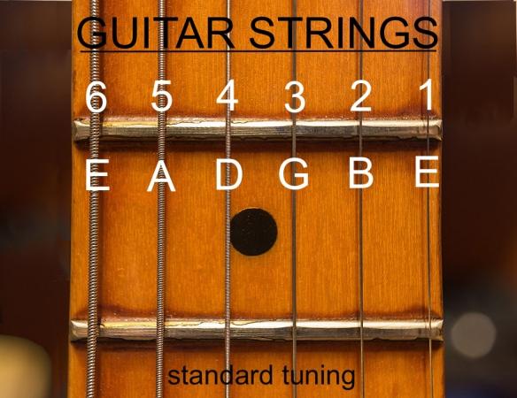 Guitar String Names Tim Lyles